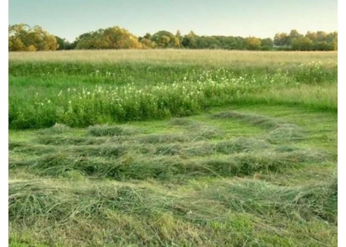 Классификация газонокосилок при их выборе
